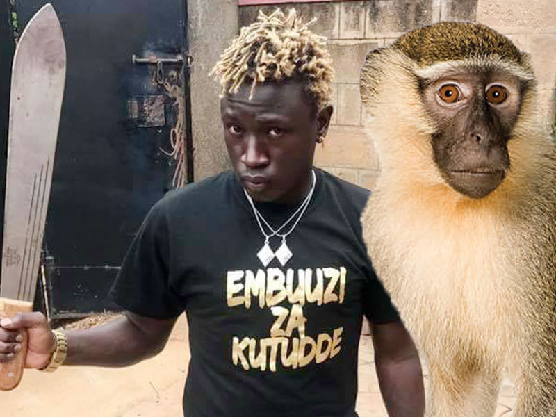 Gravity Omutujju Confesses: It's True I'm A Monkey